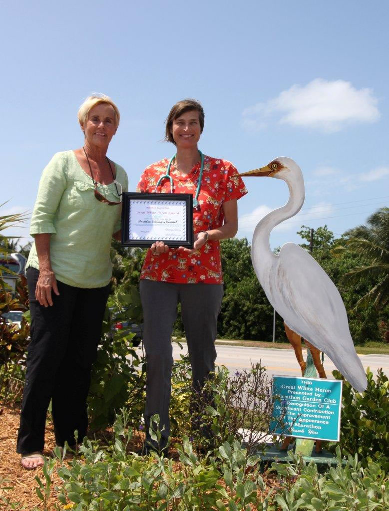 Judy Shaw presents the White Heron Award to Dr. Geraldine Diethelm of the Marathon Veterinary Hospital.